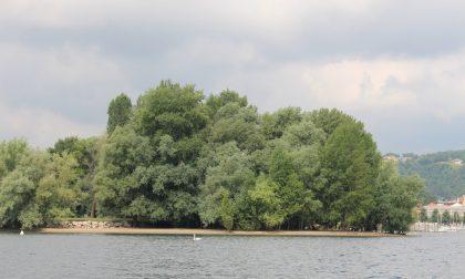 Arona prosegue l'operazione Lago Pulito
