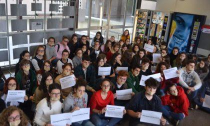 Libertà di insegnamento: sit in anche a Novara