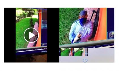 Castelletto ladri ripresi in pieno giorno: INCREDIBILE VIDEO