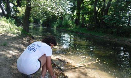"""Allarme Legambiente per l'acqua in zona Lido: """"E' fortemente inquinata"""""""