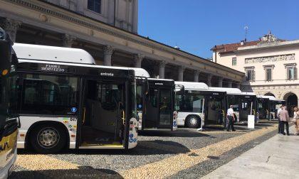 Sette nuovi bus a metano per la Sun