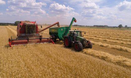 Bando da 2 mln di euro per il miglioramento delle aziende agricole  Ascolta