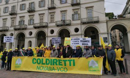 Anche da Novara agricoltori in piazza a Torino
