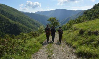 Lavoro Piemonte: concorso pubblico per 4 posti di guardiaparco
