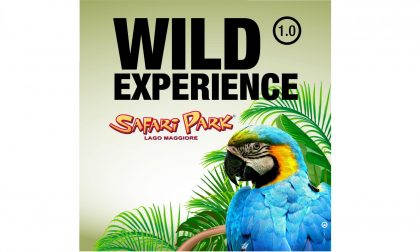 Safari Park: questo weekend sconto del 50%
