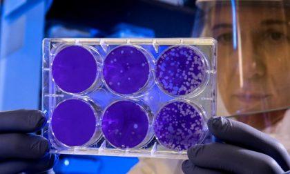 5 decessi e 175 casi positivi al Coronavirus in Piemonte