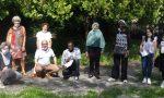 Diplomi all'Istituto Molinari di Arona: gli studenti stranieri hanno ottenuto la licenza media