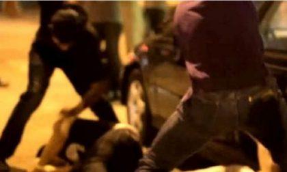 Panettieri malmenati da gang di ragazzini: sconcerto a Pallanza
