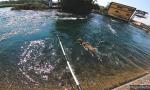 Cameri il salvataggio di una capriola caduta nel canale Regina VIDEO e FOTO