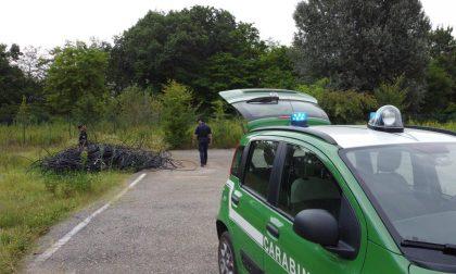 Sequestrati 10 metri cubi di rifiuti pericolosi e 200 pneumatici