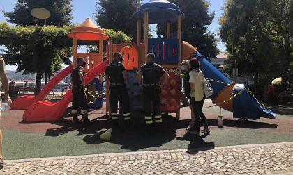 Arona nido di vespe al parco giochi: pronto intervento di comune, polizia municipale e vigili del fuoco