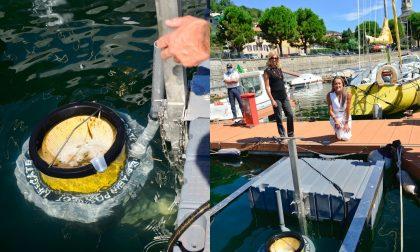 """Lesa posizionato """"Seabin"""": speciale cestino di raccolta dei rifiuti galleggianti"""
