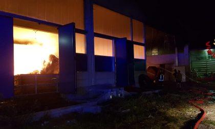 Oleggio incendio in una azienda agricola FOTO