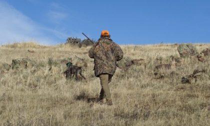 """Coldiretti: """"Riparte la caccia, la situazione era insostenibile"""""""