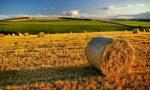 Agricoltura piemontese al vertice del Recovery Plan: la Regione appoggia le imprese