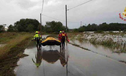 Risaie inondate, arnie perse, bestiame affogato: in Piemonte danni per milioni di euro