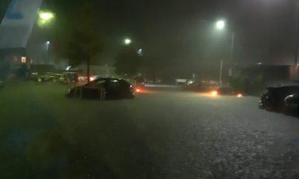 Alluvione a Mergozzo: auto completamente sommerse dall'acqua VIDEO