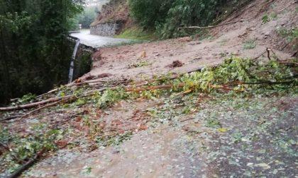 Frana sulla provinciale Pogno Alzo: strada chiusa