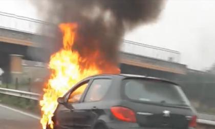 Auto prende fuoco sulla superstrada nel biellese | VIDEO