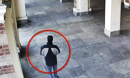 Derubavano donne assorte in preghiera in chiesa   VIDEO