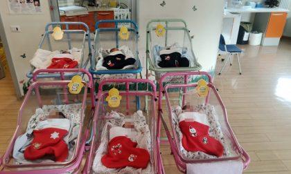 Calze nanna per i bimbi nati a dicembre al Santissima Trinità: il dono del personale infermieristico