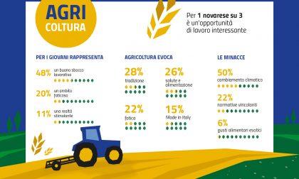 Novara torna all'agricoltura: per un cittadino su tre i campi sono un'opportunità