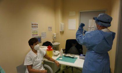 Immunità di gregge entro agosto? In provincia di Novara servono 2622 vaccini al giorno