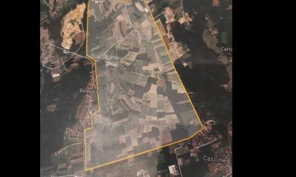 Muro elettrico di 7 chilometri per proteggere Maggiora dai cinghiali