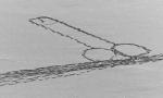 Disegna un pene camminando sul lago ghiacciato rischiando la vita
