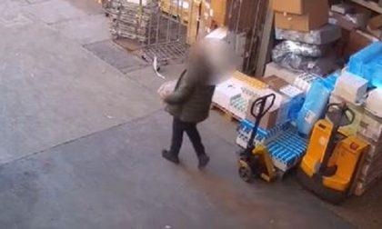 Ladro finto magazziniere: arrestato, rilasciato, l'ha rifatto e… l'hanno ribeccato