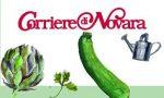 Torna l'orto fatto in casa con il Corriere di Novara