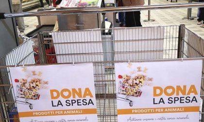 """Novara """"Dona la Spesa"""" per aiutare le famiglie in difficoltà che posseggono un animale domestico"""