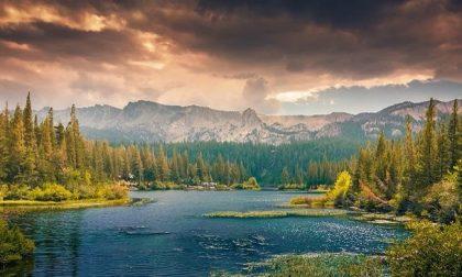Tre milioni di euro per valorizzare i boschi e le foreste del Piemonte