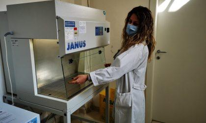 Vaccinazioni degli ultraottantenni non trasportabili anche a domicilio con l'Asl Novara