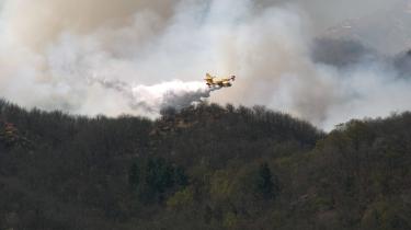 Fiamme in Ossola: bruciano i boschi della valle Cannobina