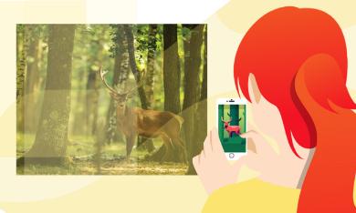 Dall'Università di Torino un'app per controllare la selvaggina