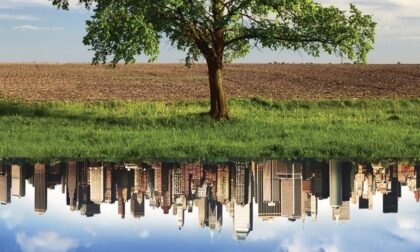 Agroecologia: l'agricoltura che rispetta ambiente, salute e diritti