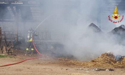Incendio in un'azienda agricola di Invorio