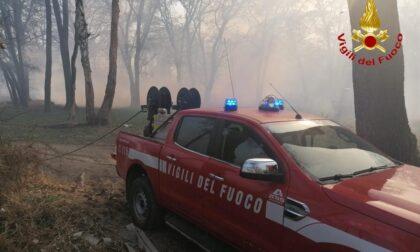 Maxi incendio tra Romagnano e Fontaneto domato dai vigili del fuoco