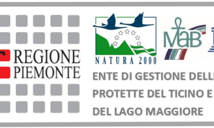 """Contest """"Uno Slogan per l'Ente di Gestione delle Aree Protette del Ticino e del Lago Maggiore"""""""