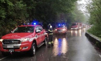 Albero cade sulla Provinciale 46 a Pella: intervento dei vigili del fuoco