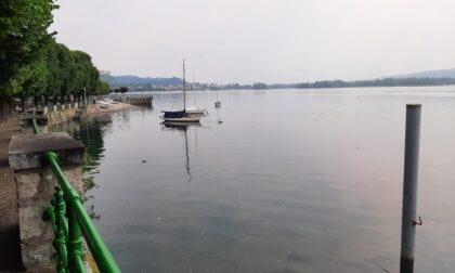 """Legambiente: """"Nei prossimi anni difficile che il lago Maggiore mantenga le tre Vele"""""""
