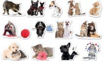 Originali stickers in regalo col giornale
