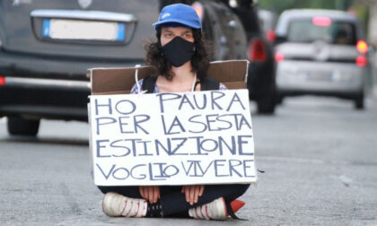 """La protesta dei cartelli arriva in strada a Torino: attivisti anti """"estinzione di massa"""""""