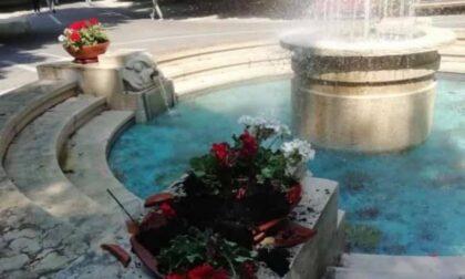 Novara vandalizzata la fontana dell'Allea