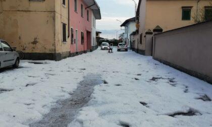 """Coldiretti Novara-Vco: """"Grandine e vento hanno danneggiate riso, mais e frutta"""""""