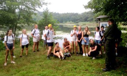 Volontari da tutta Europa nelle aree protette dei Canneti di Dormelletto e nel Parco dei Lagoni
