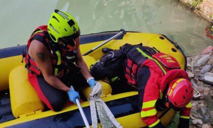 Recuperato cadavere nel canale Cavour