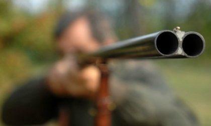 Bracconieri a caccia di notte nel Verbano: denunciati
