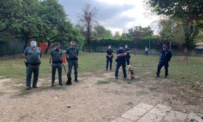 Novara cani anti-veleno nei parchi in città